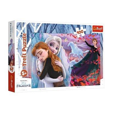 Wholesaler of Puzzle Hermanas Frozen 2 100pzs