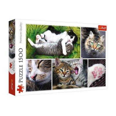 Wholesaler of Puzzle Premium Quality Gatitos Collage 1500pzs