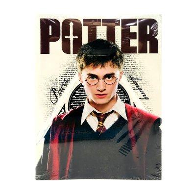 Libro para colorear Harry Potter