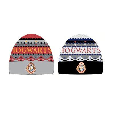 Gorro adulto Hogwarts Harry Potter 2 modelos
