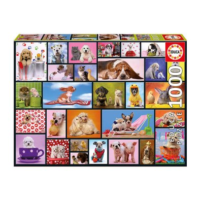 Wholesaler of Puzzle Momentos compartidos 1000pzs