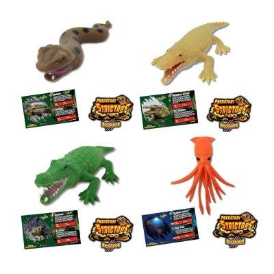 Wholesaler of Expositor Kreaturex Predadores Strictors