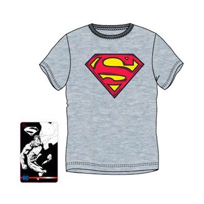 Camiseta adulto Superman